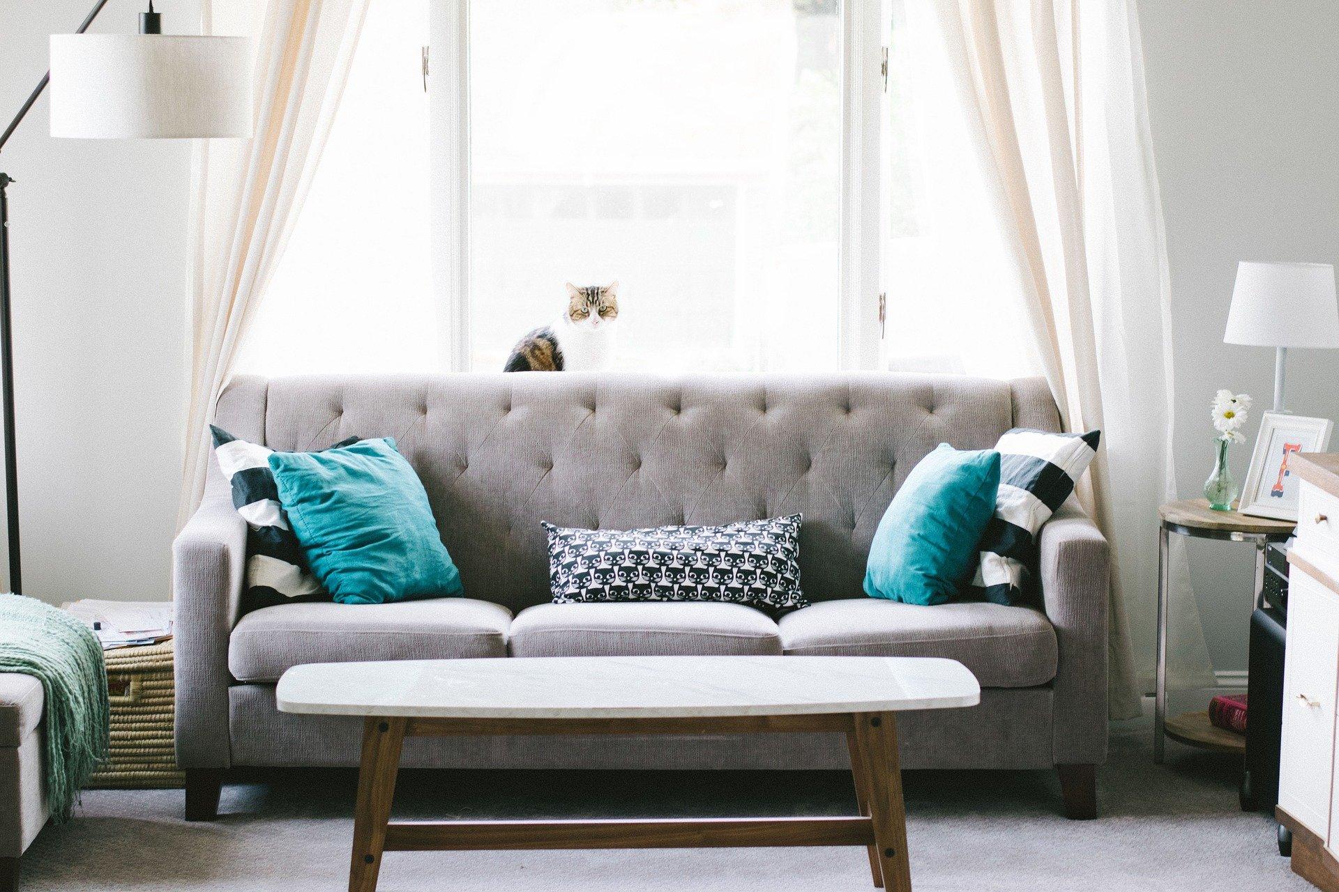 Farvede puder i sofa
